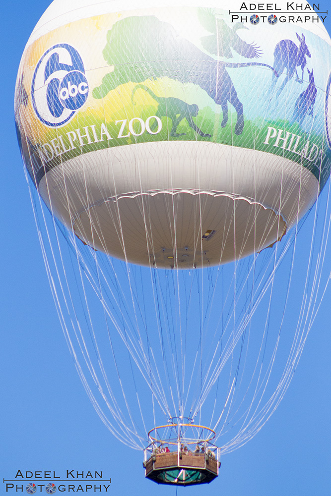 hot air balloon at Philadelphia Zoo
