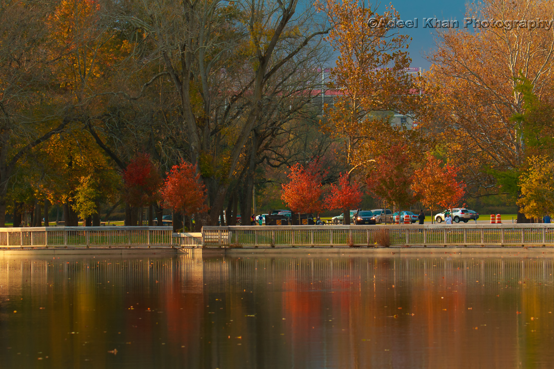 fall, park, johnson park, adeelkhanphotography, adeel khan photography