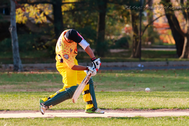 Pro Cricket America: Crescent vs Forward